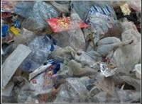 Утилизация отходов Проблема утилизации твердых бытовых отходов