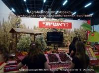 agro mashov выставка сельского хозяйства в Израиле