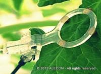 Сенсоры, измеряющие физиологические параметры растения